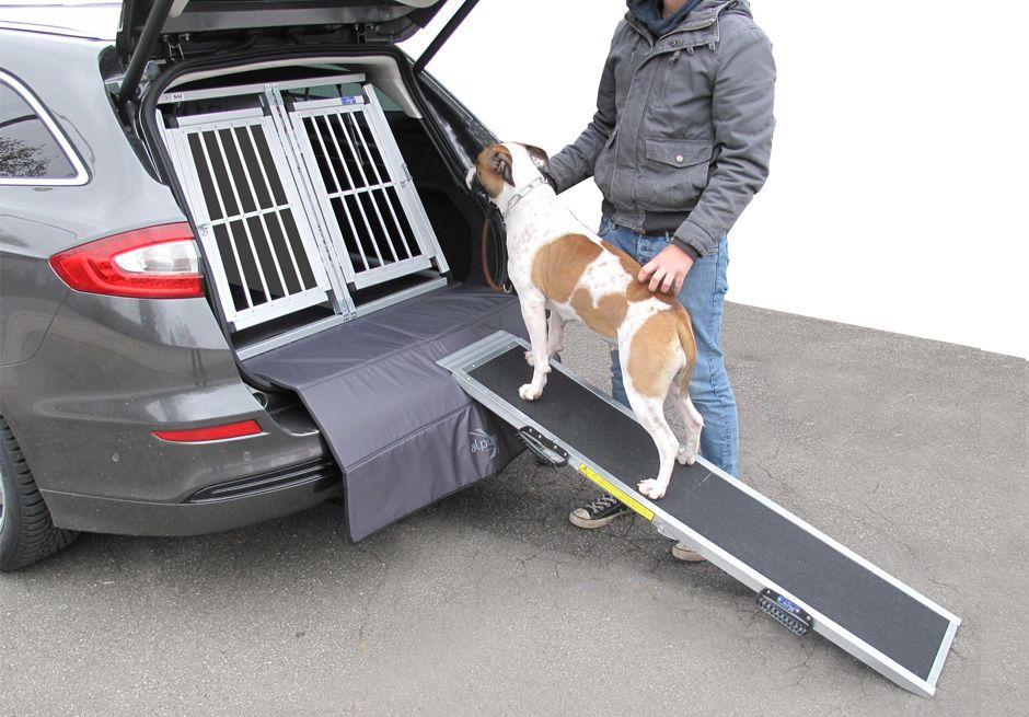 Nástupní rampa pro psa
