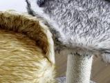 Detail kožešiny