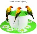 Fontána i pro papoušky
