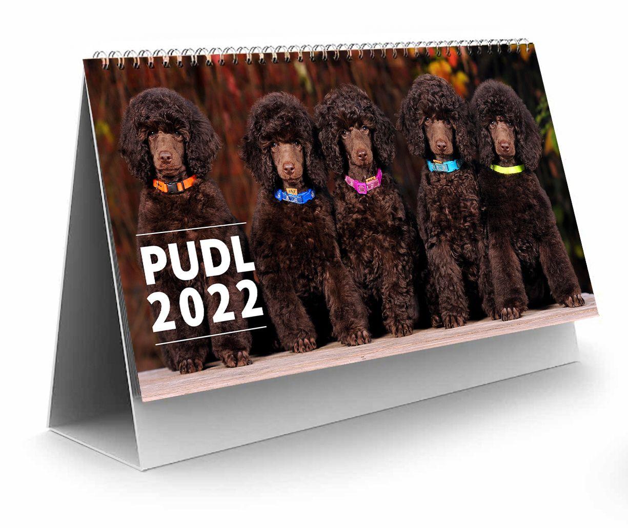 Kalendář pudl 2022